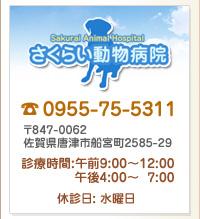 さくらい動物病院 〒847-0062 佐賀県唐津市船宮町2585-29